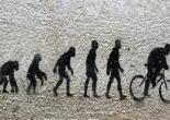 Evolución_Fannydades